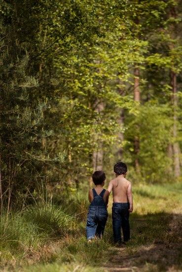 woods-23